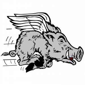 Dayton Rugby Flying Pig Logo